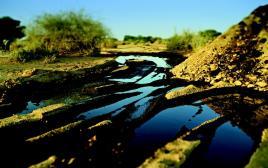 אסון הנפט בעברונה