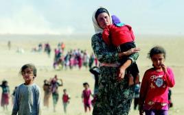 פליטים יזידים