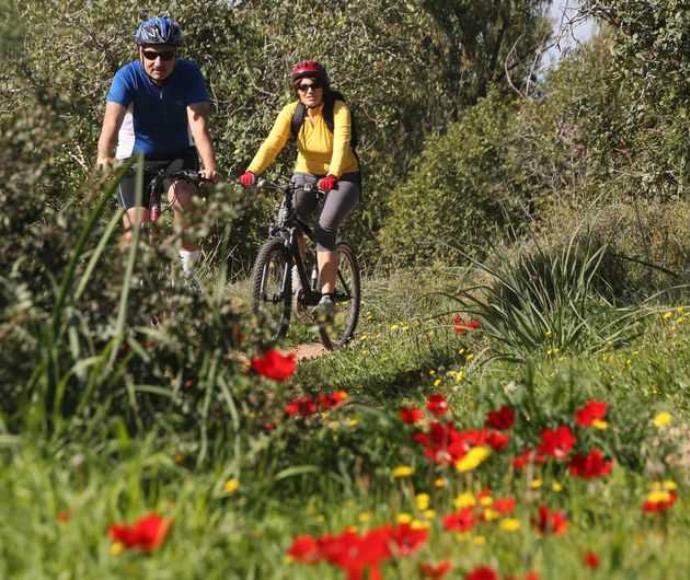 טיול אופניים ברחבי הארץ