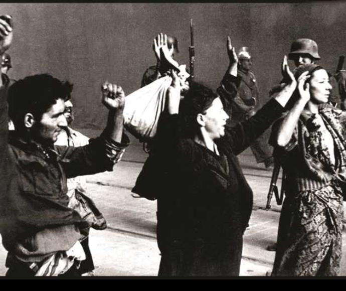 שילגולד-שפירא מרימה את ידיה לאות כניעה