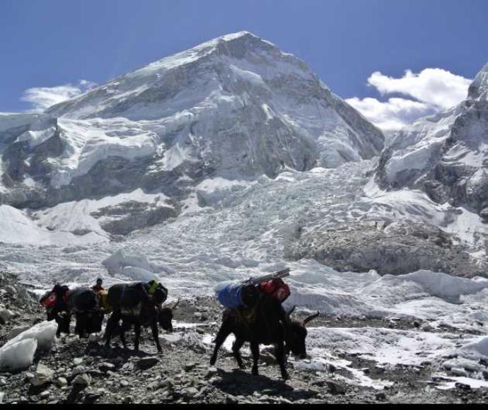 האוורסט בנפאל