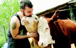 פעיל תנועת 269 לזכויות בעלי חיים עם העגלות דיאנה ולונה