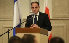 דוד נרמניה, ראש עיריית טביליסי