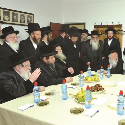 מועצת גדולי התורה של אגודת ישראל (צילום: אלי סגל, באדיבות בחדרי חרדים)