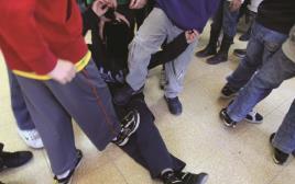אלימות בבתי הספר