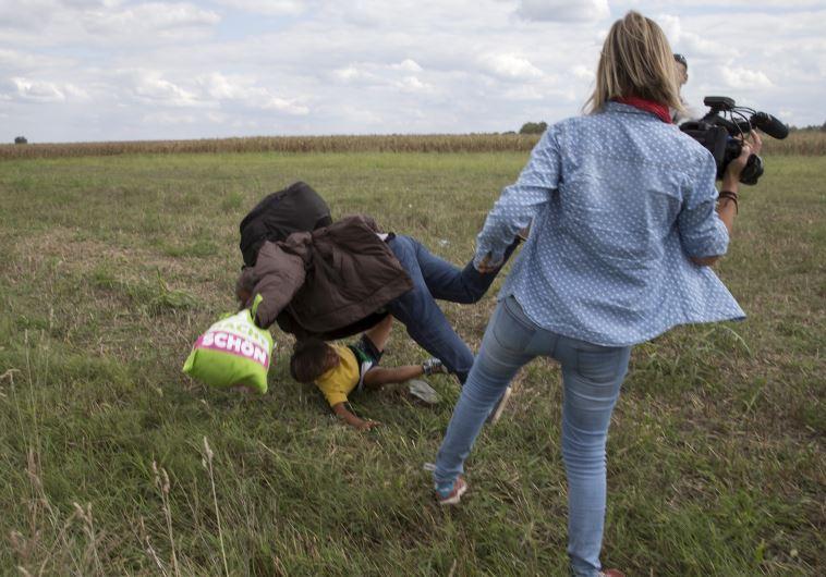 צלמת הונגריה מפילה פליט. צילום: רויטרס