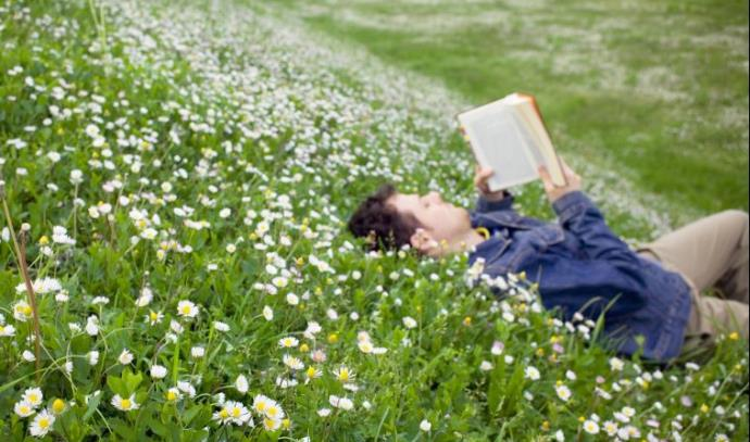 קריאת ספרים, אילוסטרציה