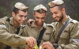 חיילים עם תפוח בדבש