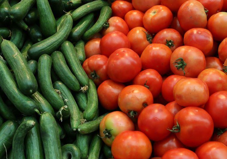 עגבניות ומלפפונים