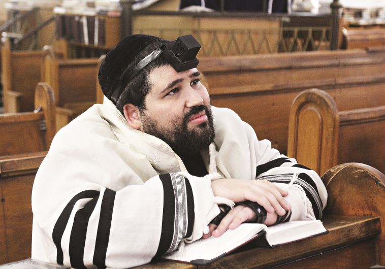 הרב ישראל שניאור