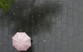 ניר קיפניס, גשם, מטרייה, סתיו