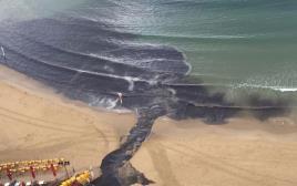 זיהום בחוף תל אביב