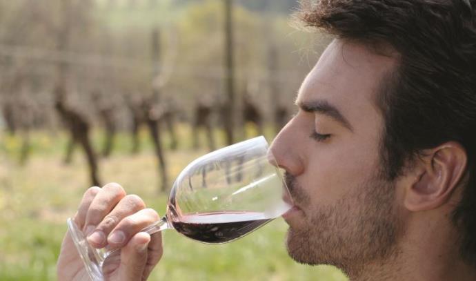 יין אדום, בריאות
