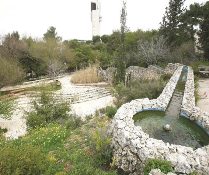הגן הבוטני בהר הצופים בירושלים