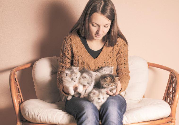 בחורה עם חתולים. אינגאימג