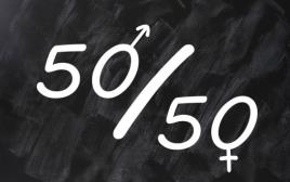 מגדר, לימודי מגדר, שוויון בין המינים