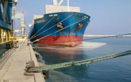 זיהום בנמל חיפה