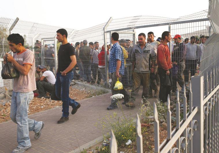פועלים פלסטינים בדרכם לעבודה במחסום