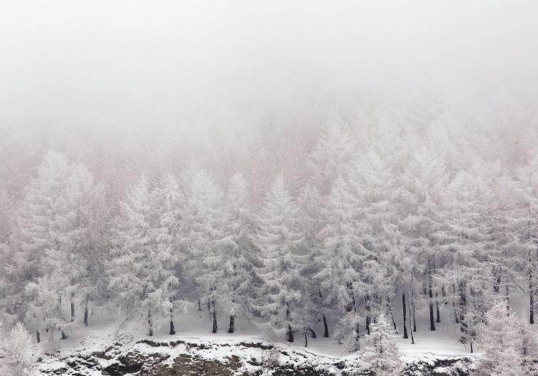 מסלולים מלהיבים. אתר הסקי ססטיירה באיטליה