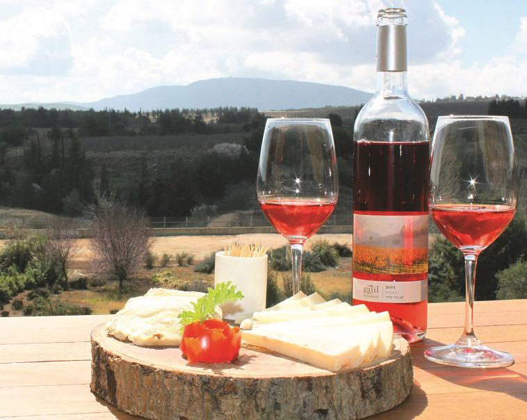 """יין הרי הגליל. צילום: דרור מילר, יח""""צ"""