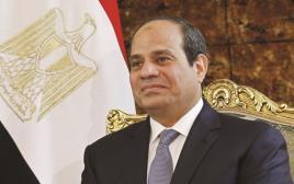א סיסי על רקע דגל מצרים