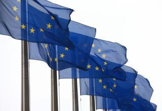 דגלי האיחוד האירופי