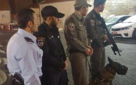 """לוחמי ושוטרי מג""""ב בשער שכם עם כלב השיטור"""