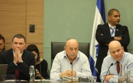 דיון בוועדת החוקה של הכנסת
