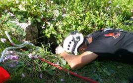 חילוץ כלבת לברדור שנפלה לבור ביער אלכסנדרוני