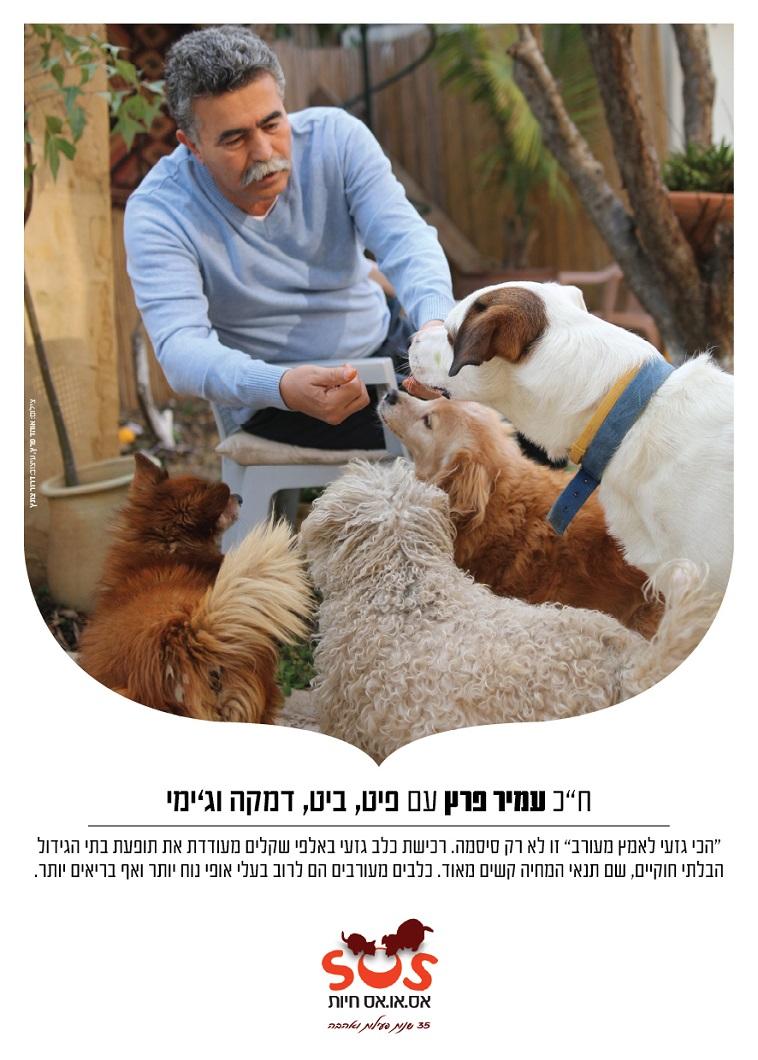 עמיר פרץ עם ארבעת הכלבים שלו. צילום: אוהד פרץ