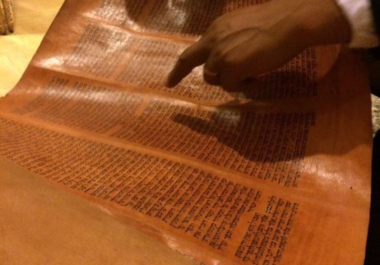 """ספר התורה שהועלה במבצע """"מקצה תימן"""". צילום: הסוכנות היהודית"""