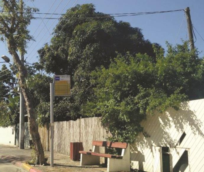 תחנת אוטובוס בהרצליה