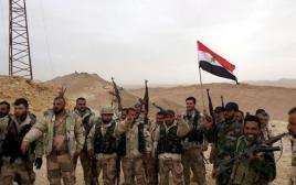 כוחות התומכים באסד בתדמור, סוריה