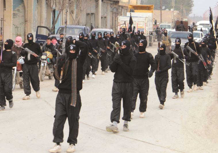 לוחמי דעאש בסוריה. אוהבים את הטויוטה היילקס. צילום: רויטרס