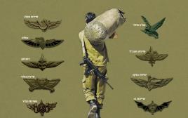 בוגרי יחידות קרביות, אילוסטרציה