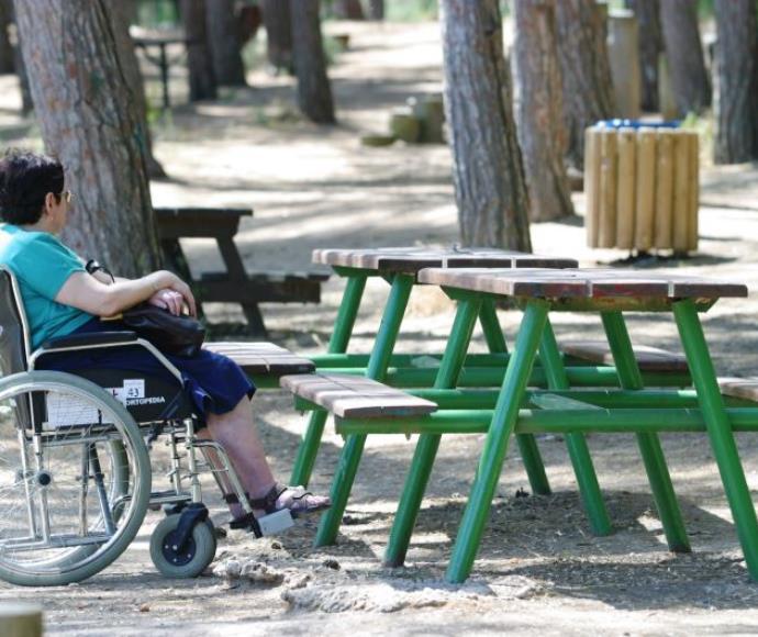 פארק מנשה נכים כיסא גלגלים