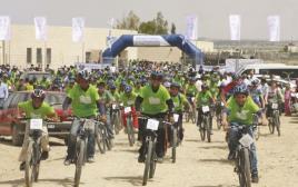 רוכבים בידידות במדבר