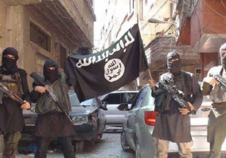 פעילי דאעש. צילום: מיאדין