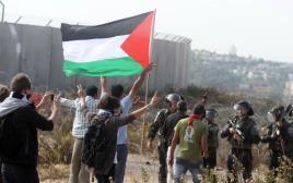 דגל פלסטיני. ארכיון