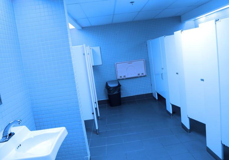 החוקרים מצאו חיידקים וצואה על מייבשי הידיים בשירותים ציבוריים. צילום : אינגאימג