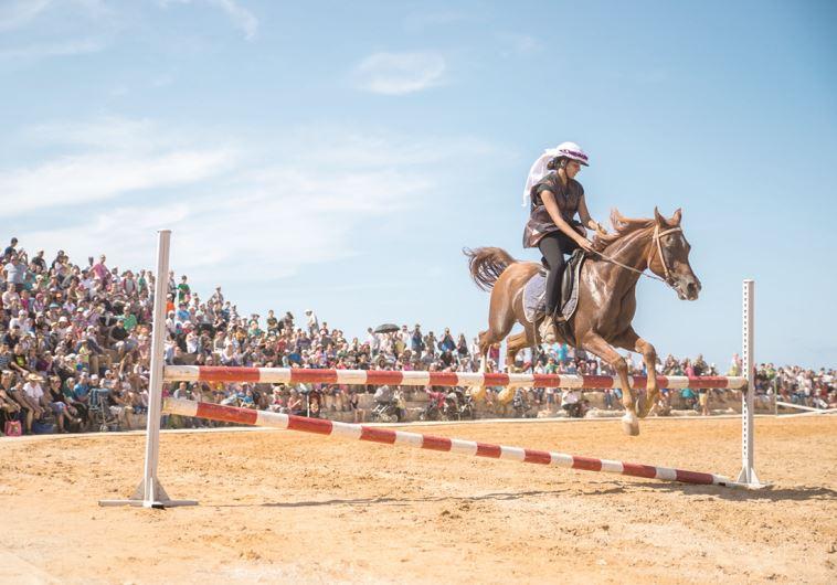 קיסריה החדשה. סוסים בהיפודרום. צילום: יחצ