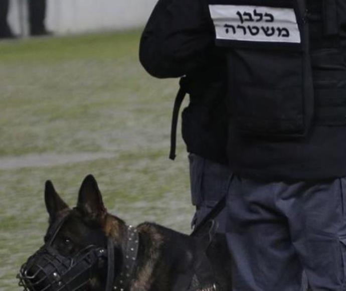שוטר במגרש כדורגל לאחר מקרה אלימות, ארכיון