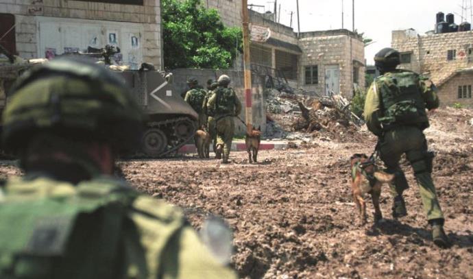 מבצע חומת מגן