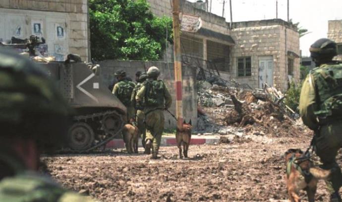 בקרב על ג'נין במהלך מבצע חומת מגן