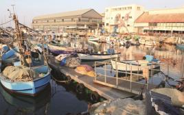 סירות דיג בנמל יפו