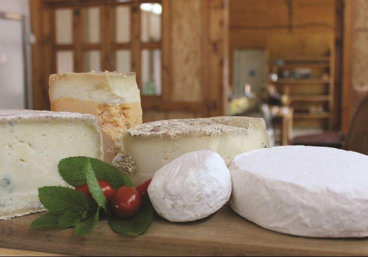 גבינות לחג השבועות