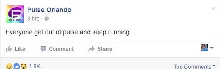 הפוסט של מועדון הפולס בפייסבוק. צילום מסך