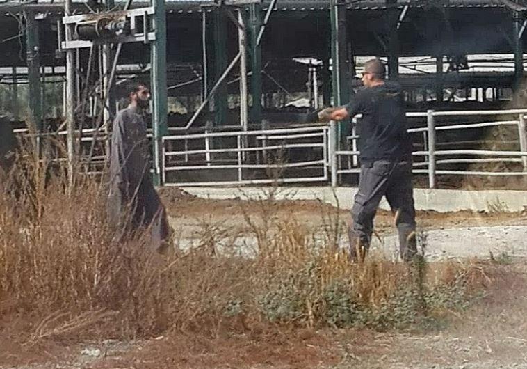"""החשוד הירדני נעצר על-ידי הרבש""""צ ונורה ברגלו. צילום: רם חכמון"""