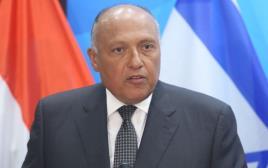 שר החוץ המצרי סאמח שוקרי
