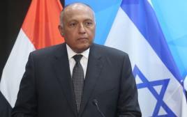 נתניהו ושר החוץ המצרי סאמח שוקרי